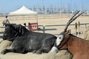 Taureau et antilope sur la plage de Royan
